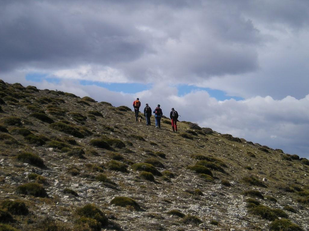 Estels del Sud Etapa Caro - Paüls